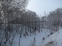 Овраг зимой