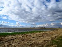 Малое озеро близ. п. Рыбачий. Автор: Зирнит Денис