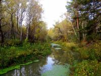 Река Артынка. Фото: Зирнит Денис